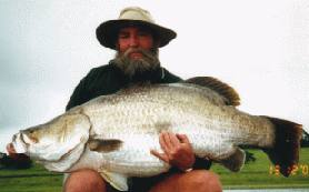 [Gambar: Barramundi_Fishing_1.jpg]